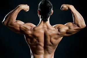 Anabolik Steroid Minimum Kullan U0131m Ya U015f U0131 Ka U00e7 Olmal U0131d U0131r
