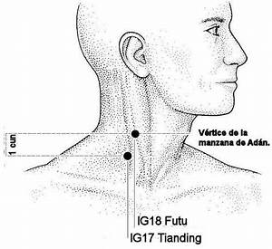 Pin On Acupuncture Uses