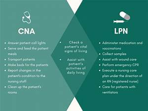 Health Aide Resume Cna Vs Lpn What 39 S The Difference E S Academy