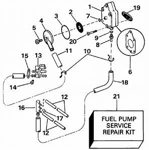 Johnson Fuel Pump And Filter Parts For 1991 40hp J40teleia