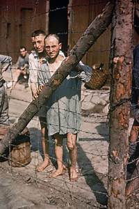 American Response To The Holocaust