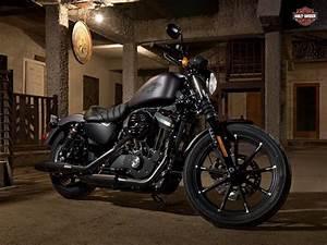 Wallpapers 2017 Harley Davidson Iron 883 - Wallpaper Cave