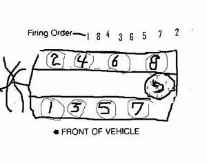 79 Cutlas Supreme Wiring Diagram