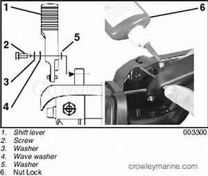 Tiller Handle Kit  P  N 5035981 Installation Instructions