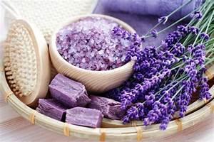 Lavendelseife Selber Machen : seife selber machen einfaches rezept f r duftende sauberkeit ~ Lizthompson.info Haus und Dekorationen