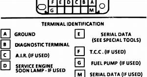 1988 Buick Electra Park Avenue Electrical Diagrams Ecm