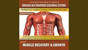 Muscle Recovery  U0026 Growth