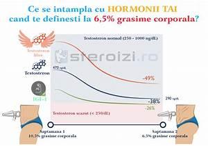 Efectele Alcoolului Asupra Cresterilor Musculare