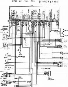 1992 Chevy Truck Tbi Wiring Diagram : 1228746 tbi ~ A.2002-acura-tl-radio.info Haus und Dekorationen