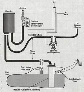 2004 Dodge Ram 1500 Evap System Diagram