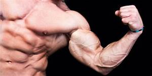 Steroids Or Not  7 Signs Of Steroid Use