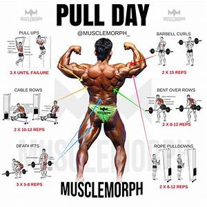Pull Day Exercise Workout Musclemorph Musclemorphsupps Com Bodybuilding Gym
