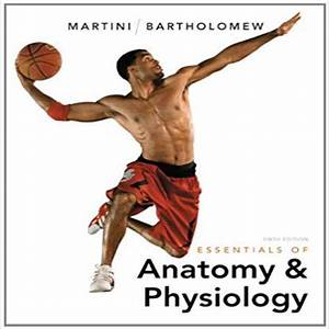 Essentials Of Anatomy And Physiology 6th Edition By