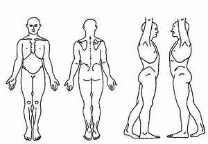 Blank Body Chart - Free Download